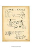 Sopwith Camel - Tara Friel