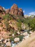 One of the Patriarchs Looks Over the Zion River Tumbling Over Rocks - Taylor S. Kennedy