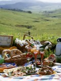Picnic with Roast Quails and Salmon - Valerie Martin