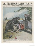 In Yellowstone a Bear Pats a Woman in a Car - Vittorio Pisani