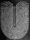Good Kernels from a Sample Ear of Corn in a Laboratory - Wallace Kirkland