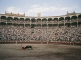 A Bullfight in Madrid - Walter Meayers Edwards