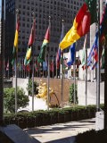 Flags Outside the Rockefeller Center, New York City, New York, USA - Walter Rawlings