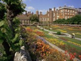 Sunken Gardens, Hampton Court Palace, Greater London, England, United Kingdom - Walter Rawlings