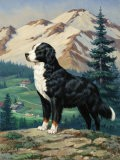Bernese Mountain Dog Stands on a Hill Overlooking a Rural Valley - Walter Weber