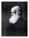 Charles Darwin, Print After the Painting by W.W. Ouless, from The History of the Nation - Walter William Ouless
