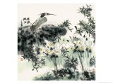 Big Bird and Narcissuses - Wanqi Zhang