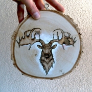 artisanat dart animaux cerf nature pyrogravure bois : Cerf