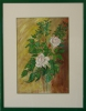 Artiste Peintre - roses blanches