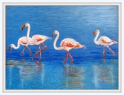 dessin animaux animaux flamants roses : FLAMANTS ROSES