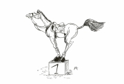 dessin animaux cheval humour encre : cheval humour