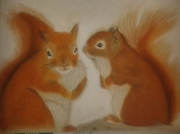 dessin animaux ecureuil foret animaux automne : Squirrels