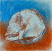 dessin animaux rebeka lengyel chat : Chat en dormant
