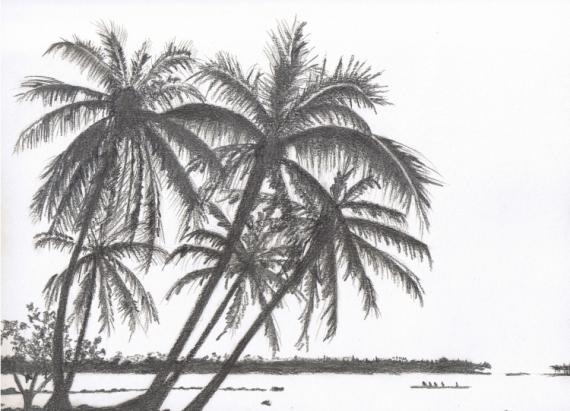 Dessin Dessin Paysage Tableau Crayon Palmiers