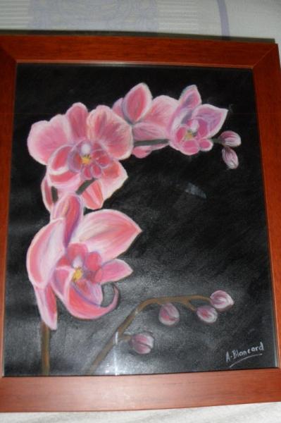 DESSIN fleur/ rose fond noir , L\u0027orchidée rose
