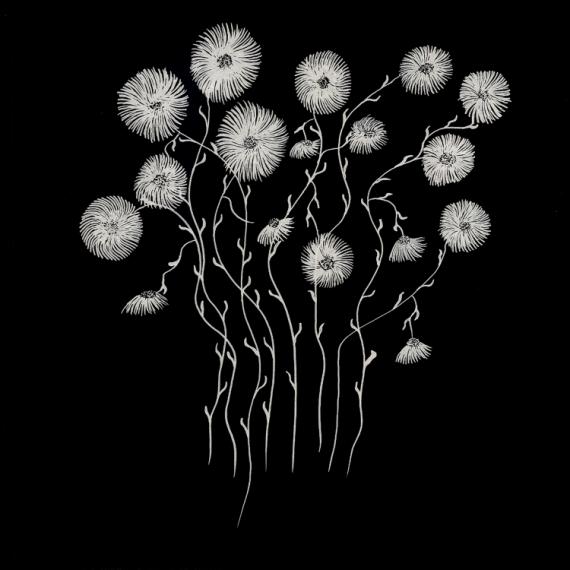 Dessin Fleurs Noir Et Blanc Encre Fleurs Fond Noir 1