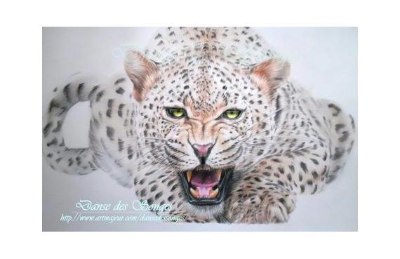Dessin Leopard Animal Felin Leopard Realise Avec Des Crayons De