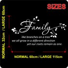 Wall Stickers FAMILY LIKE BRANCHES ON A TREE WALL QUOTES WALL ART DECAL   N18