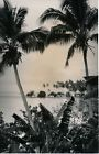 TAHITI c. 1940 - Paysage Photo Nordmann  - NV 2111