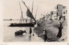 AQ529  Photo vintage anonyme Maghreb voile latine paysage vers 1935