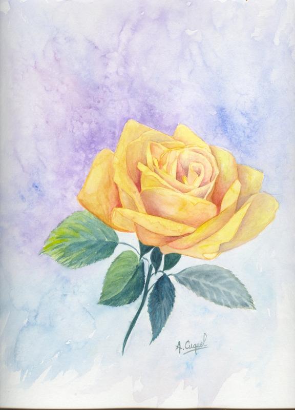 Dessin Fleur Aquarelle Facile