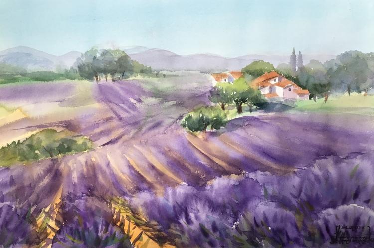 TABLEAU PEINTURE Aquarelle Lavande Provence - Lavandes Provence
