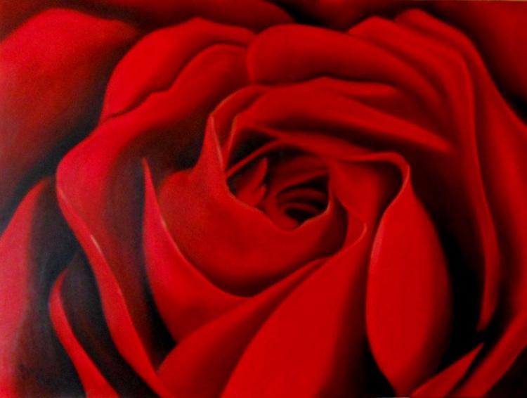 Tableau Peinture Art Fleur Rose Rouge Gros Plan Fleurs Peinture A L