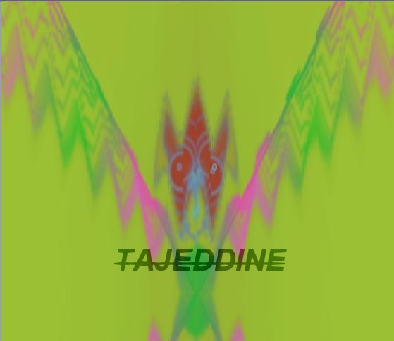 TABLEAU PEINTURE - L'oiseau rare