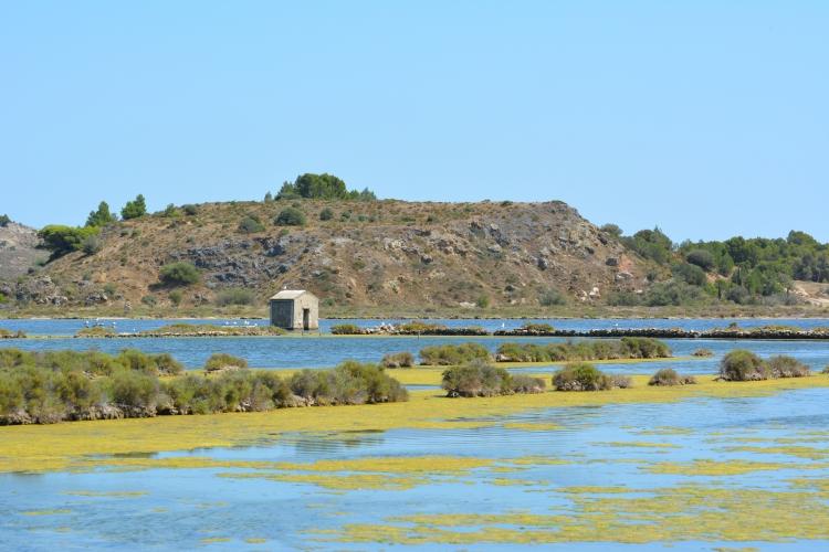 PHOTO Peyriac de Mer Aude - Etang de Peyriac de Mer