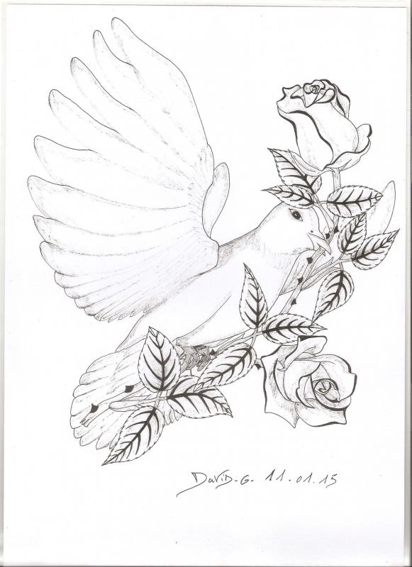 Dessin Fleurs Crayon La Colombe