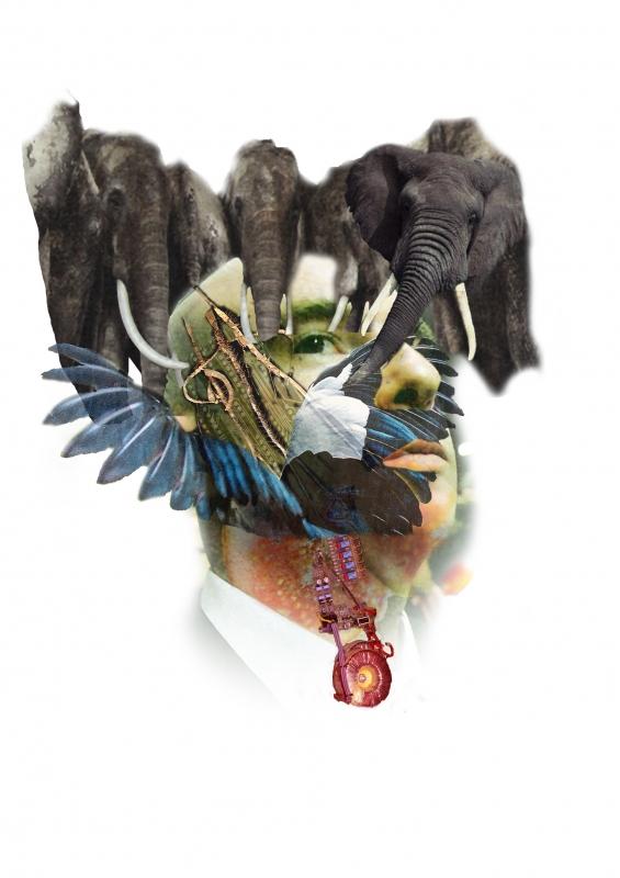 ART NUMéRIQUE elephants homme nature collage - Homme Elephants