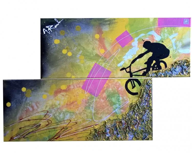 TABLEAU PEINTURE bmx descente abstrait velo - move sport