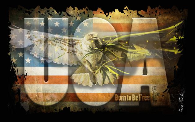 ART NUMéRIQUE USA Eagle Aigle Tobal - USA Eagle