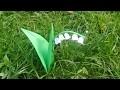 Origami : Une fleur de muguet en papier - Origami simple