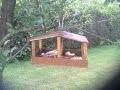 Fabrication d'une mangeoire à oiseaux