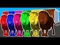 Apprendre les couleurs pour enfants w couleurs animaux Lion & dinosaures - vidéo amusante pour les