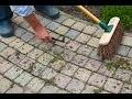 Voici une astuce pour éradiquer les mauvaises herbes