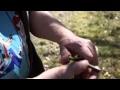 Tutoriel : comment fabriquer un sifflet en châtaignier