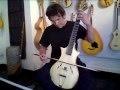 Guitare à archet de Philippe Berne luthier