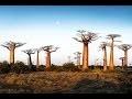 Splendeurs naturelles d'Afrique - les grandes curiosités naturelles [Documentaire | HD]
