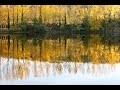Relaxation paysages d'automne et musique douce