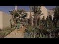 Le Jardin Secret: la restauration d'un grand riad abandonné