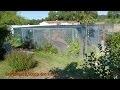 Réalisation d'une grande volière (construction aviary)