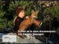 Appel de l'orignal : Gisèle Benoit, peintre animalier et naturaliste, avec sa nouvelle assistante