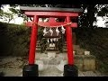 Goodies#61 : Rituels et traditions au Japon
