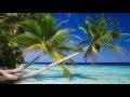 DÉCOUVREZ LES ILES MALDIVES - un endroit paradisiaque sur terre - La terre est ma maison