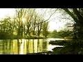 1 Heure - Merveilleux paysages, nature féerique et musique zen, relaxation F. Amathy