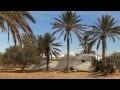 #Tunisie du Sud découverte des paysages et traditions de #Djerba
