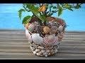 Décorer avec des coquillages le jardin et la maison ☆ LOISIRS CREATIFS