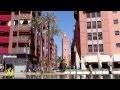 Maroc paysage 5 : Le sud 1 - Marrakech -La fleur des palmerais -